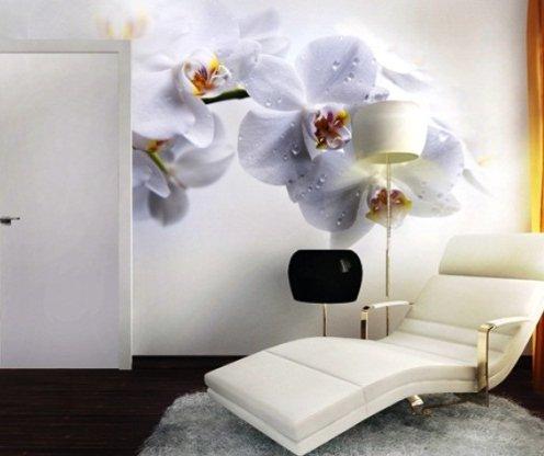 фотообои орхидея фото 3